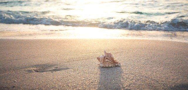 beach-4301479_640