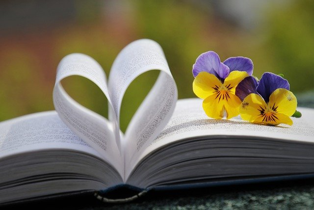 book-6214216_640