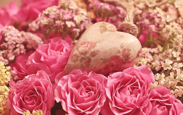 roses-3699995_640