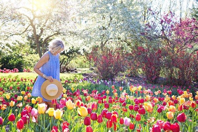 spring-2298280_640