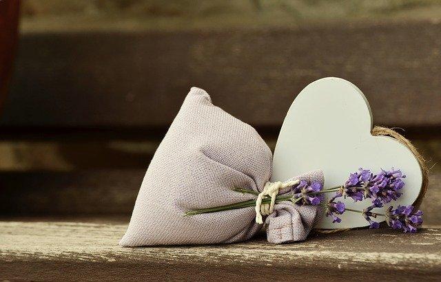 lavender-823600_640
