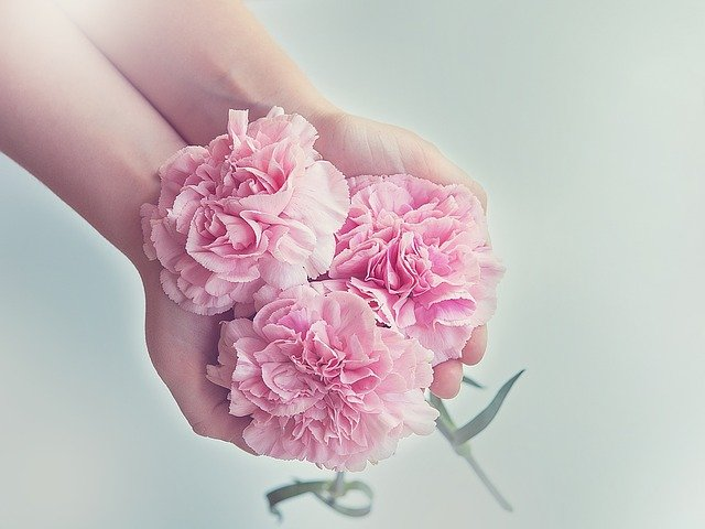 flowers-1367675_640