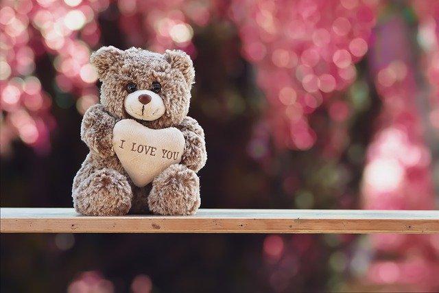 teddy-5091798_640