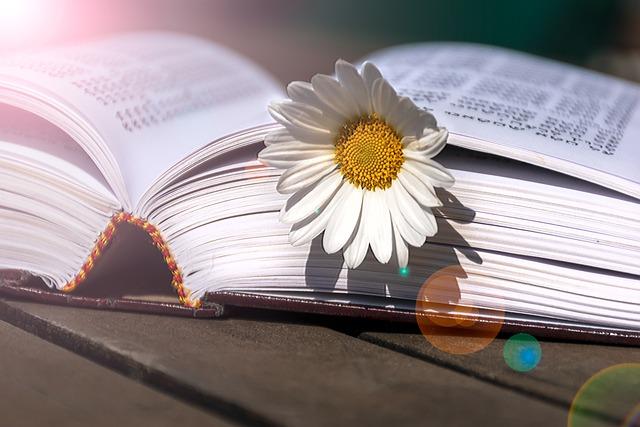 book-6176809_640